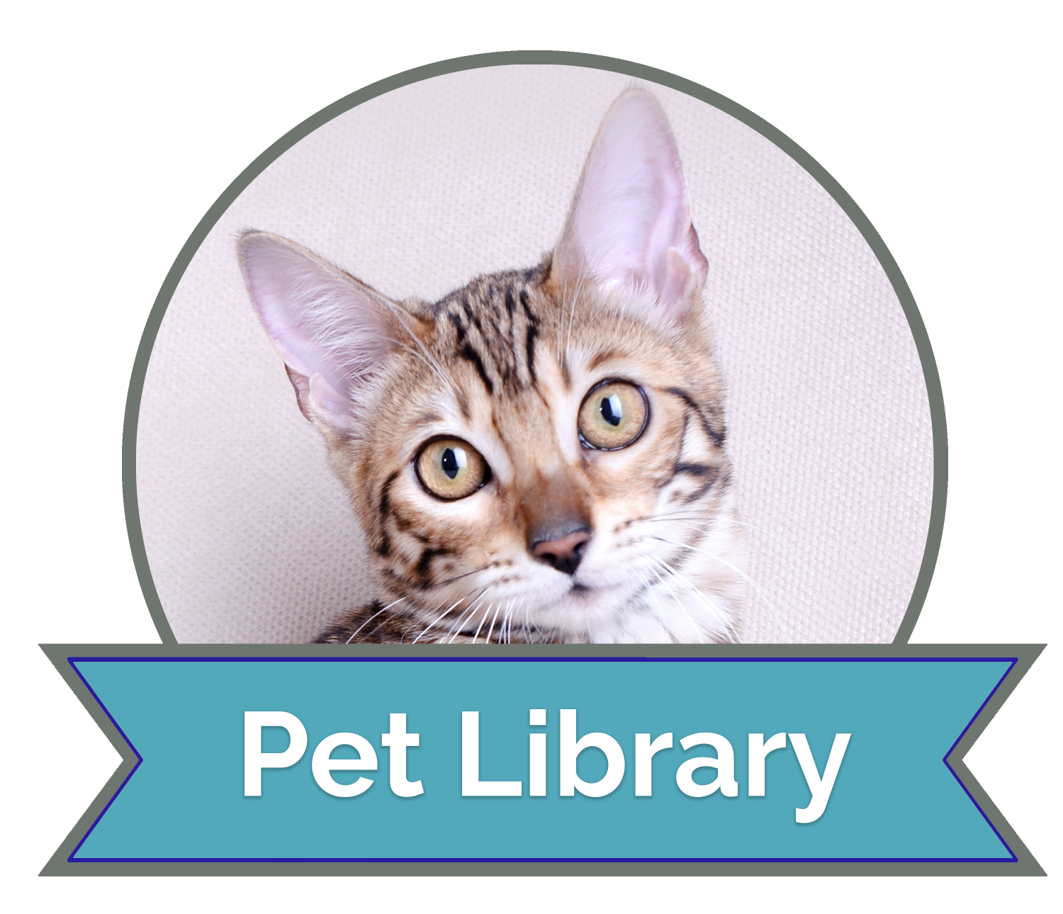 california vet hospital offers the VIN Client Information Library
